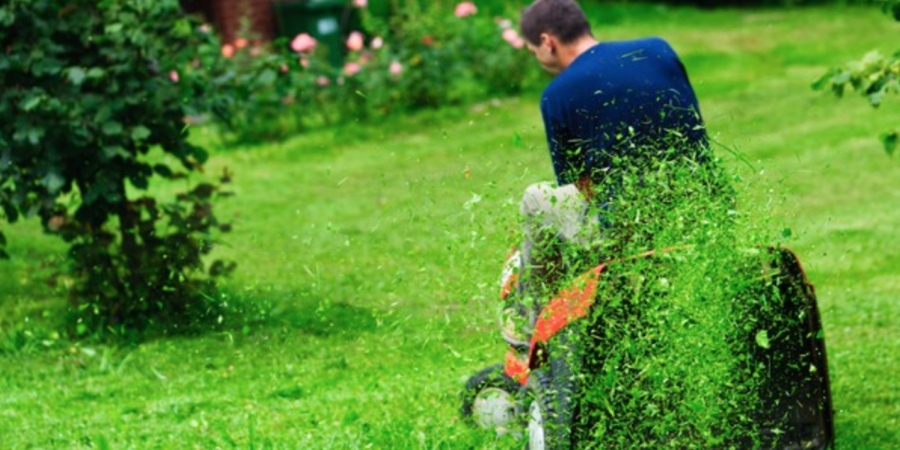 4 Spring Lawn Care Tips to Grow Curb Appeal